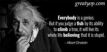 Albert Einstein Fellowship