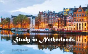 Netherlands scholarships study opportunities