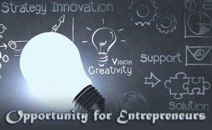 Opportunity for Entrepreneurs