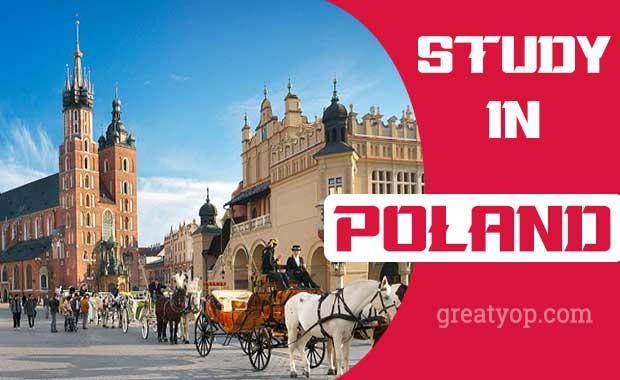Poland scholarship - Study in Poland