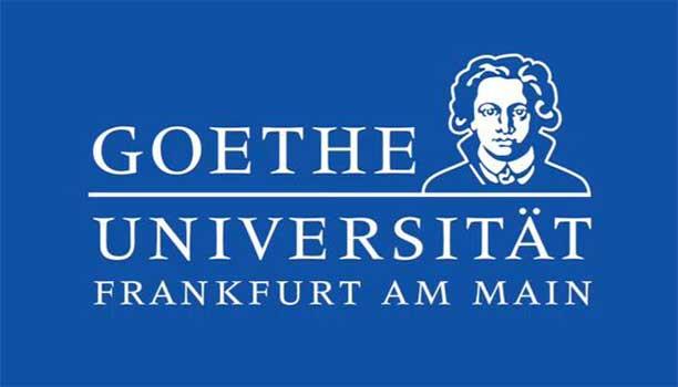 Image result for Goethe Goes Global Scholarships