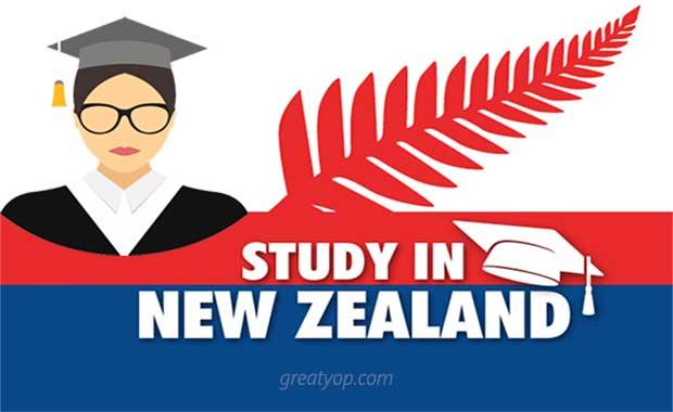 Study in New Zealand Scholarship