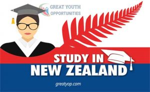 Study in New Zealand Scholarship