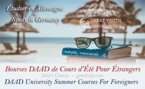 DAAD University Summer Courses in Germany