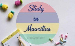 Mauritius scholarship