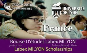 Labex MILYON Scholarships to study in France