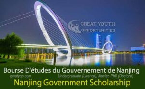 Nanjing Government Scholarship